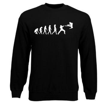 Herren Sweatshirt - Evolution Kampfsport